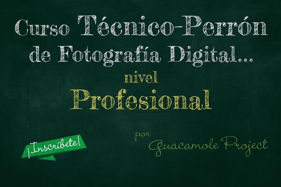 Curso Técnico-Perrón de Fotografía Digital